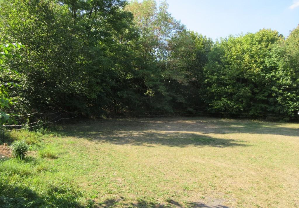 ErschießungsortFrankenhausen1