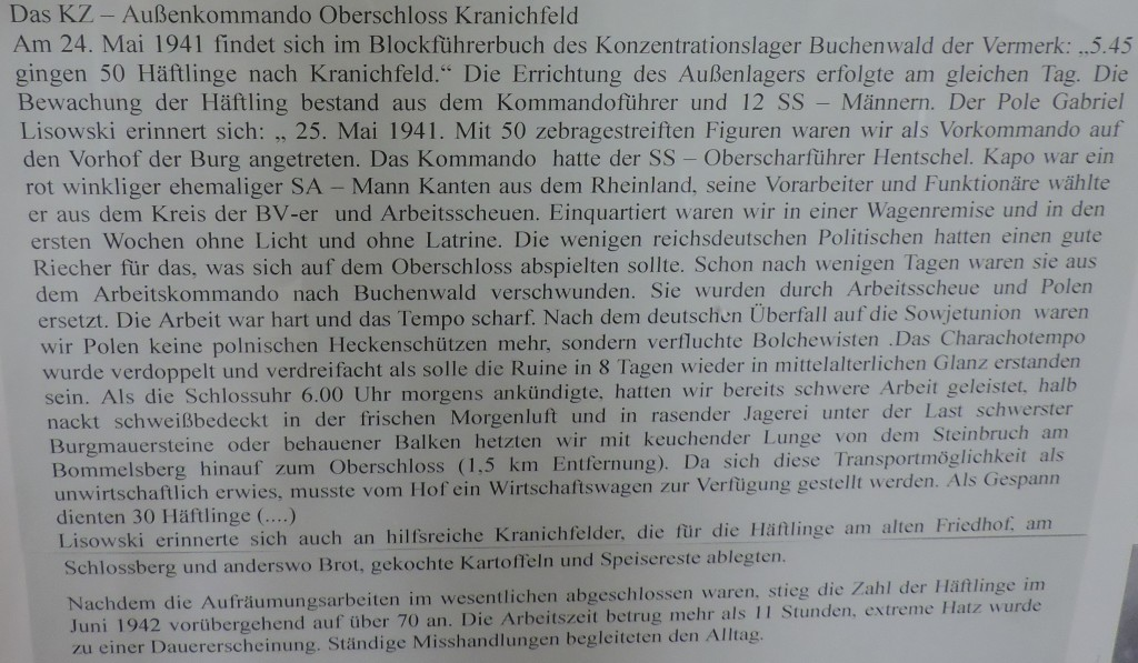Kranich7