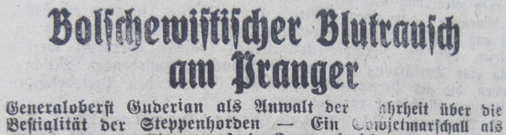Nazizeitung11