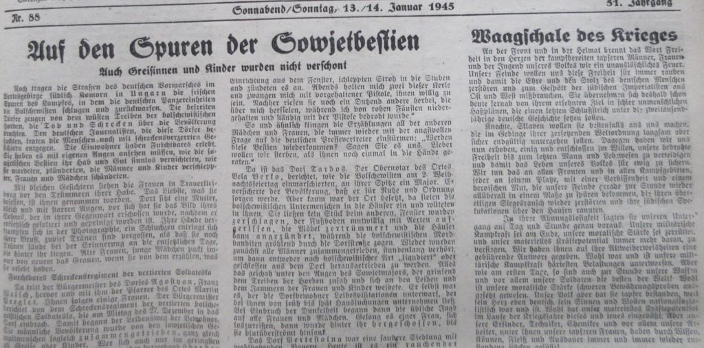 Nazizeitung13