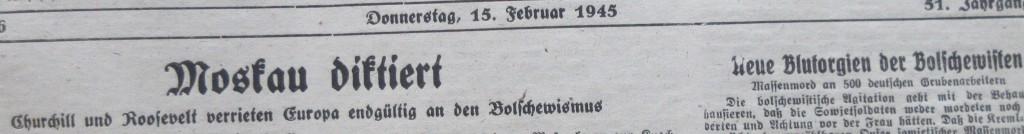 Nazizeitung20