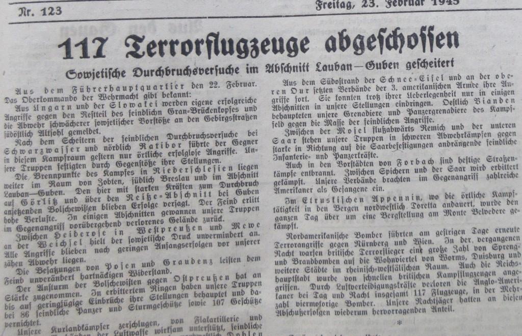 Nazizeitung22