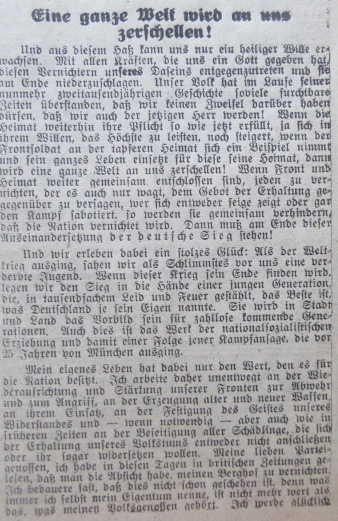 Nazizeitung23