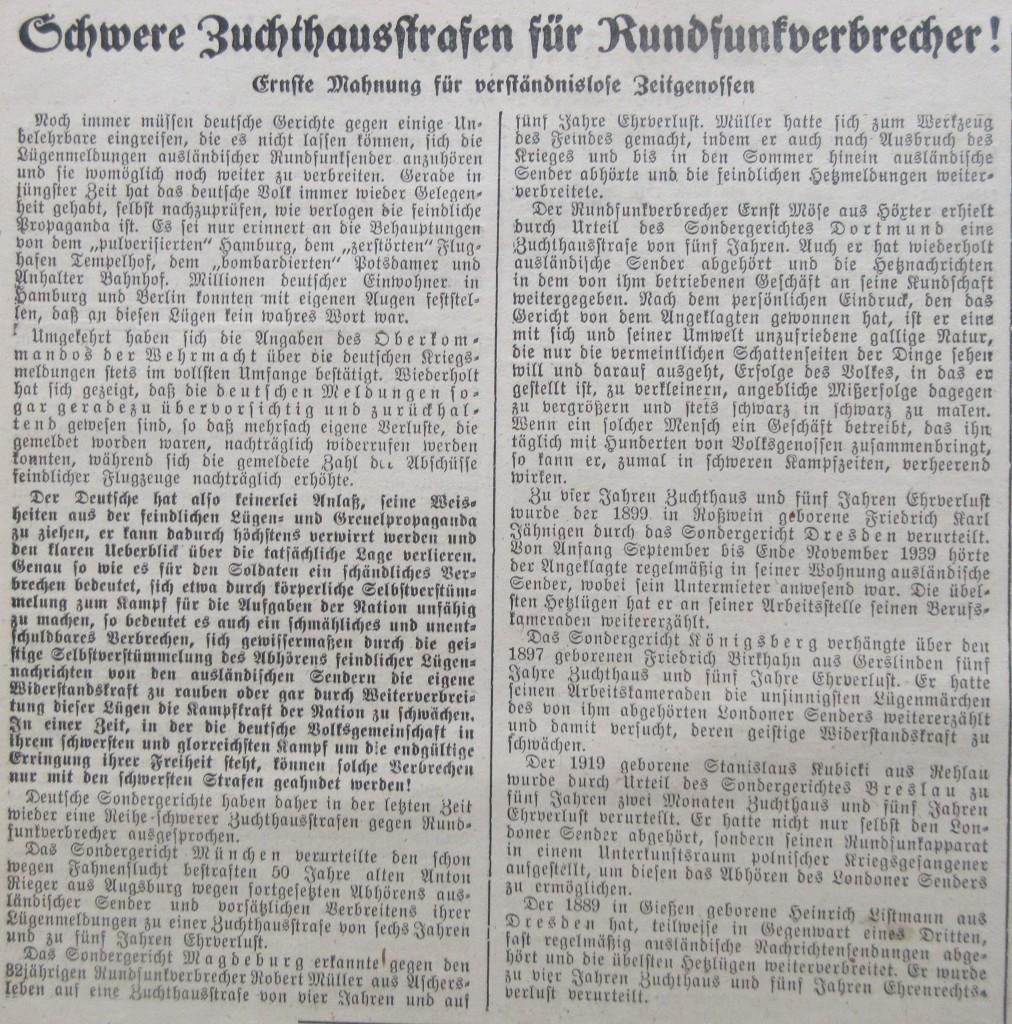 Nazizeitung9