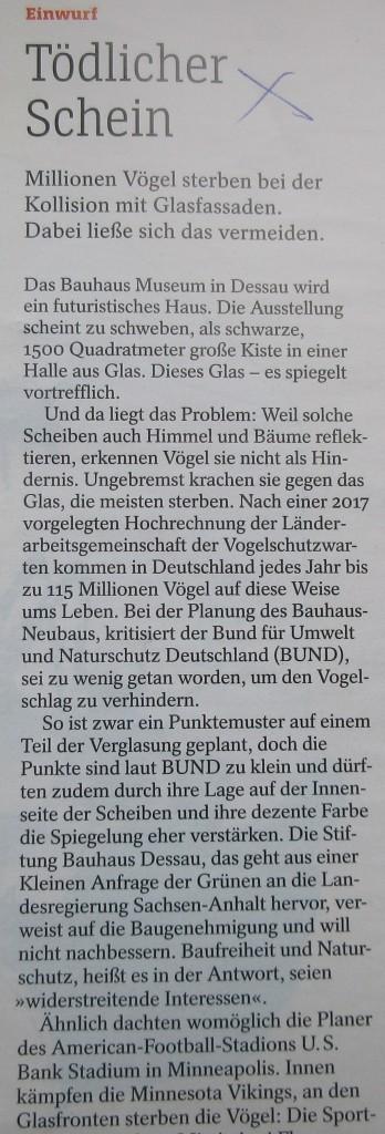 BauhausVögel1