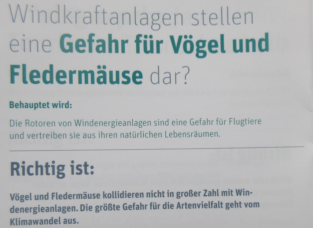 WKAVögelFled19
