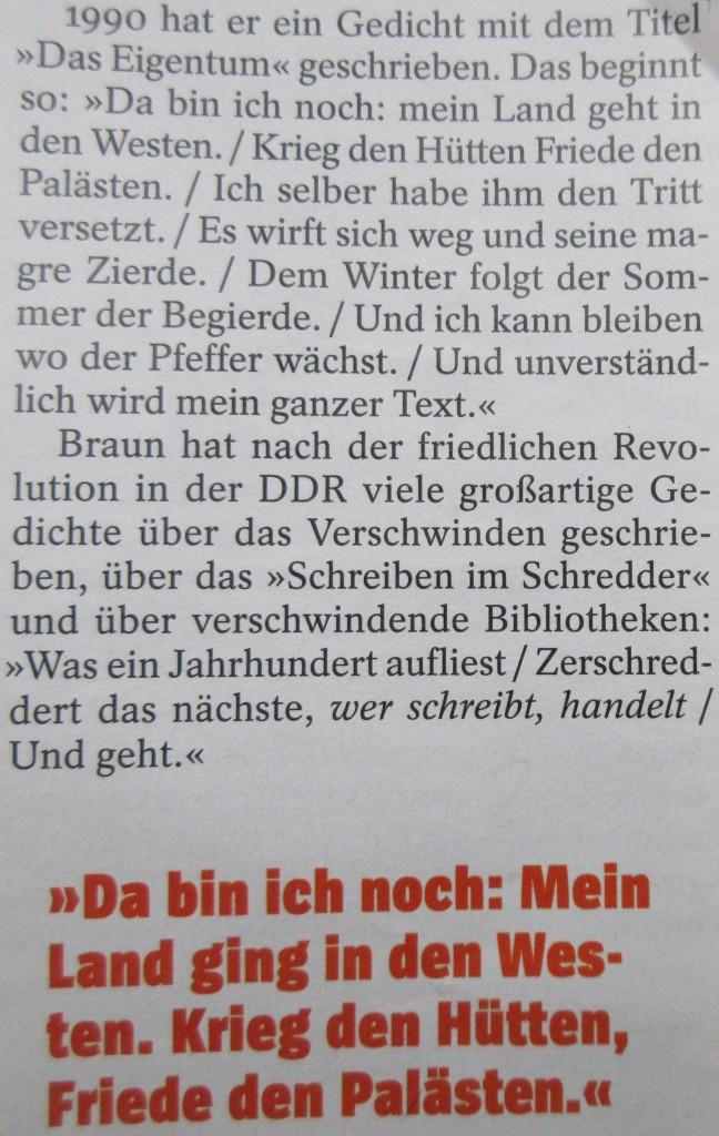 BraunHüttenPaläste19
