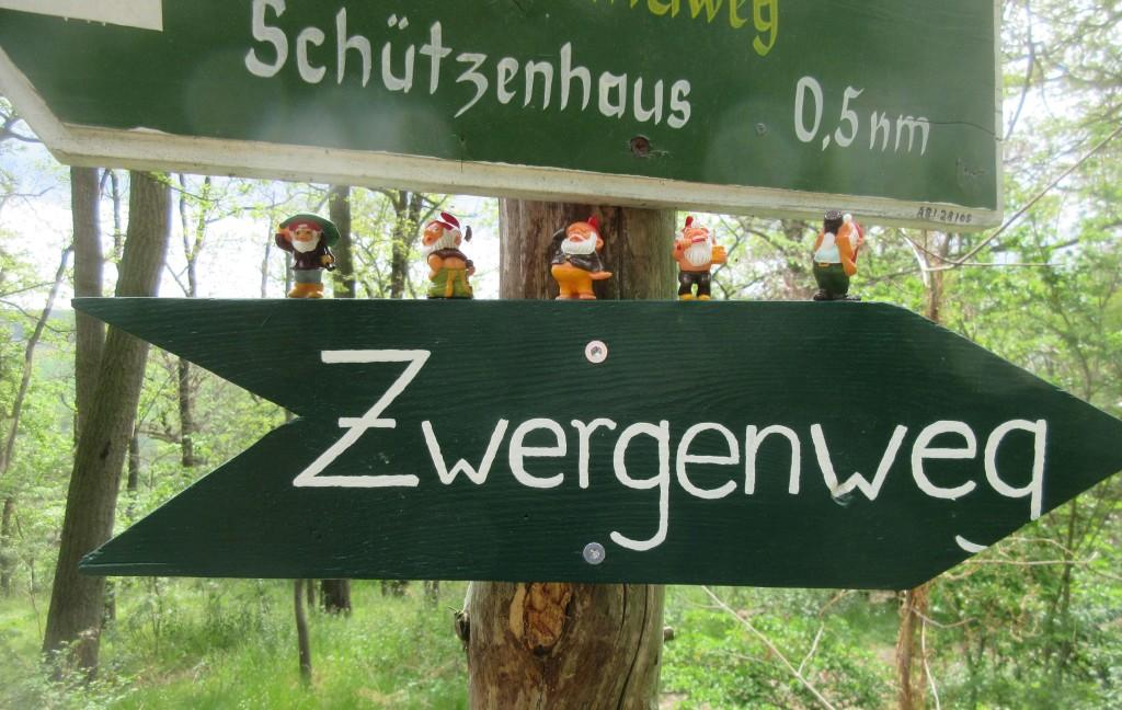 Zwerg10