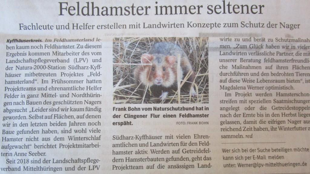 Hamster20
